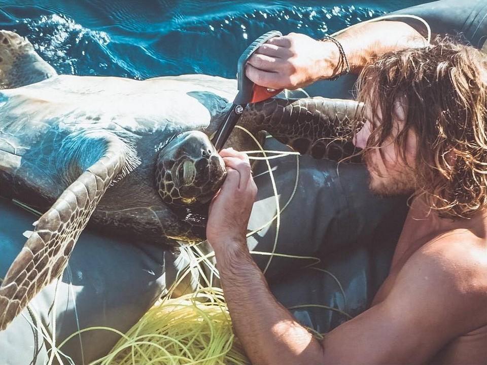 «Они живы, мы должны спасти их»: братья-путешественники спасли четырех морских черепах