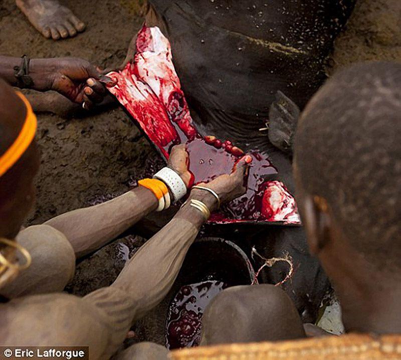 bloodmilk22 Кровь с молоком