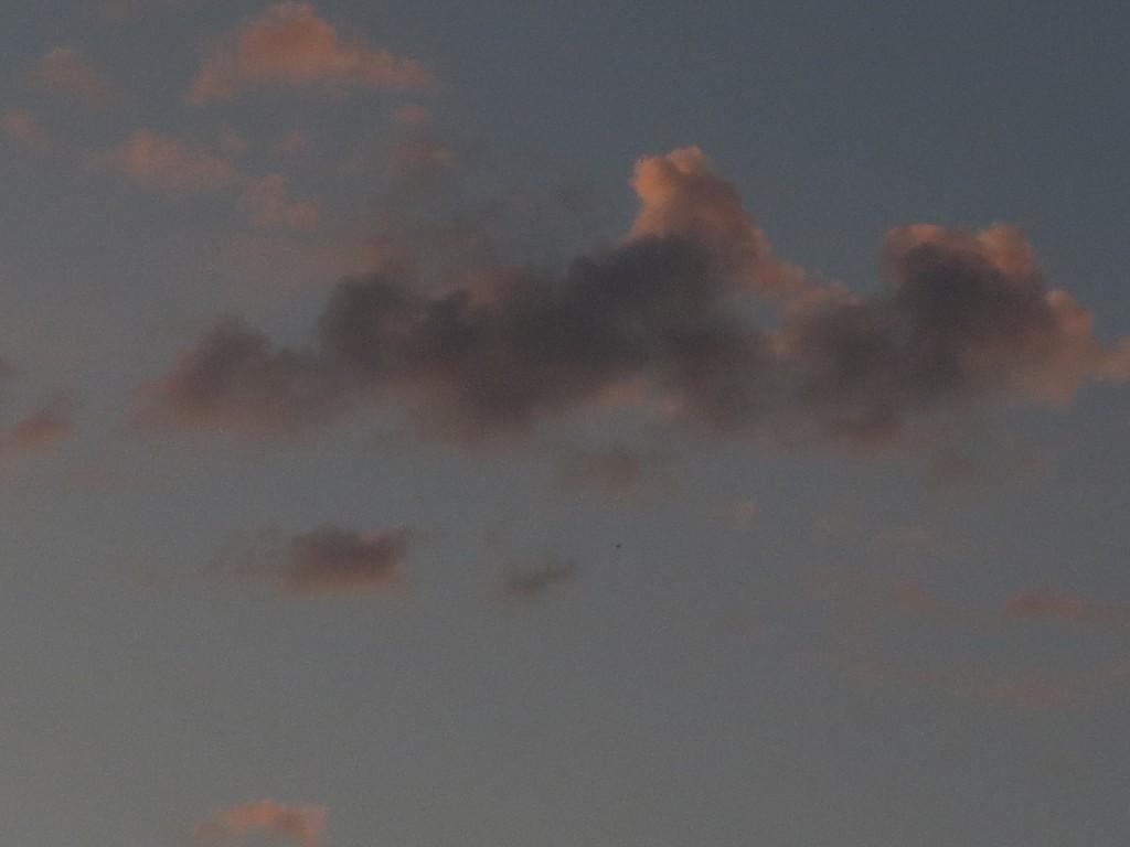 Небо стрижи