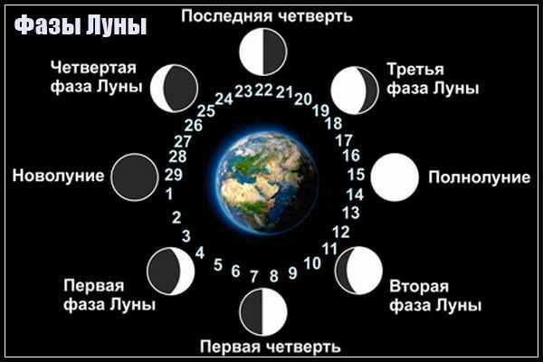 Фаза луны 11 января 2019 года