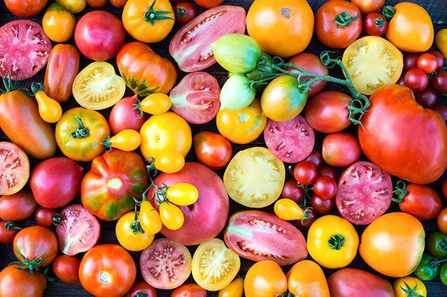 Получатся ли помидоры вкусными на среднерусской даче? Разумеется!