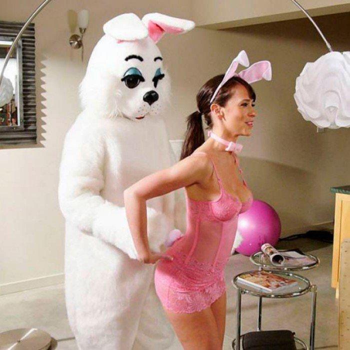 Как на самом деле должен выглядеть пасхальный кролик