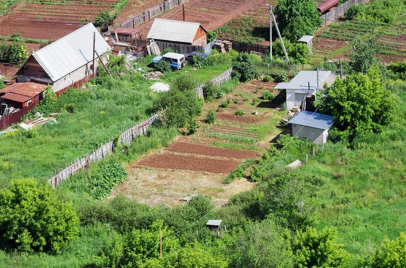 Новый закон для дачников – чего ждать российским садоводам в 2019 году