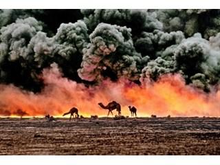 На Ближнем Востоке оформилось еще одно террористическое гнездо