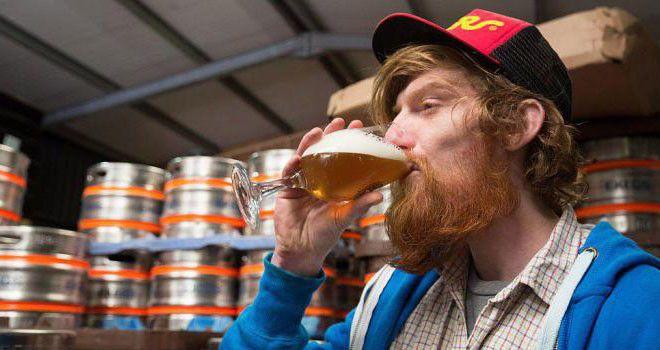 Дегустатор пива, тестировщик видеоигр, и ещё 7 профессий мечты