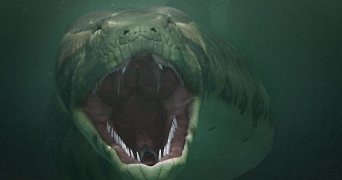 Черный змей гигантских разме…