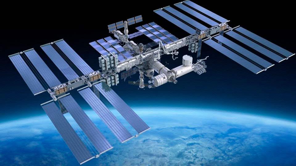 На станции МКС завелись диве…