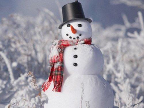 Снеговик фото картинки своими руками