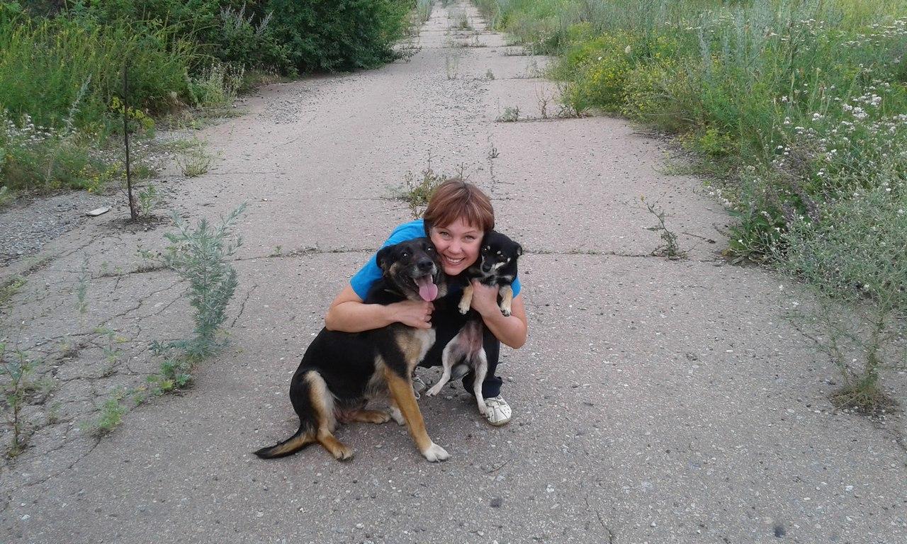 Они знали, куда нужно идти! Две измученные собаки нашли Дом, в котором живёт Добро… и фазаны