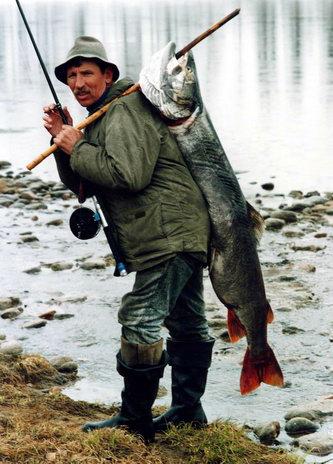 Семь советов успешной рыбалк…