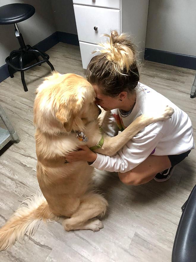 Душевные фото собак, которые…