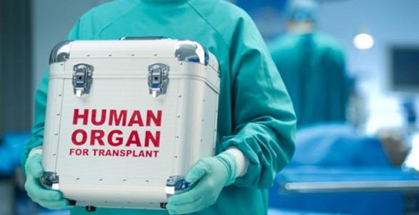 Украину превращают впоставщика органов для трансплантологии