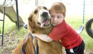 12 собак — героев, которые спасли человеческие жизни