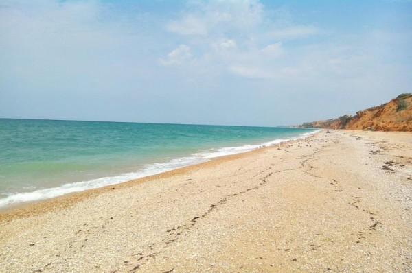 В Севастополе на два пляжа с…
