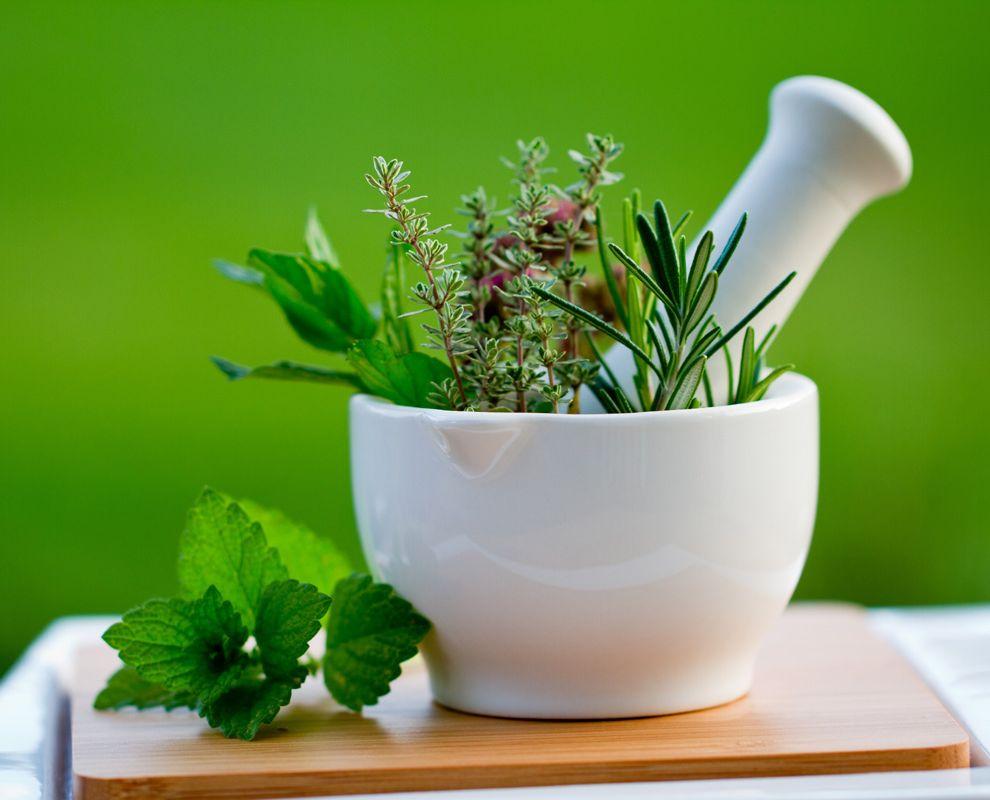7 растений, понижающих давление