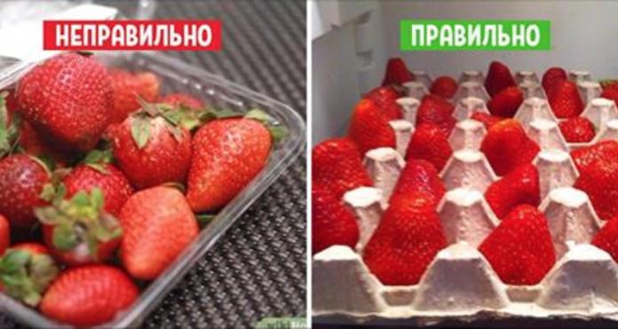Так делают в элитных ресторанах: 11 хитростей, которые сохранят фрукты свежими надолго!