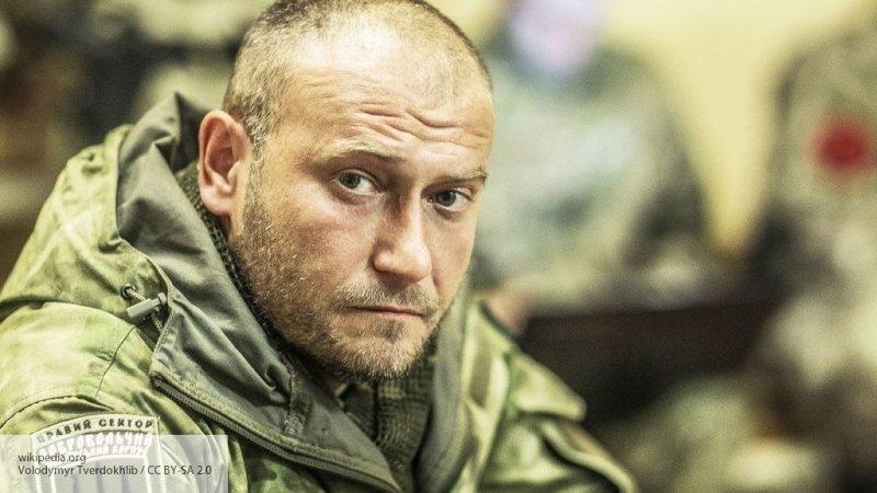 Война в кабинетах Киева: экс…