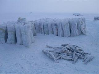 Лов рыбы в арктической Якутии