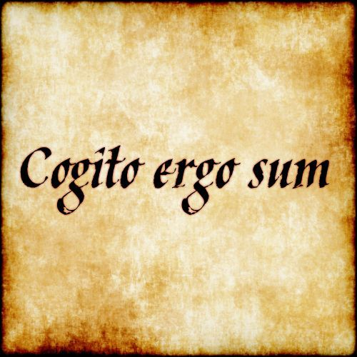 Картинки по запроÑу Cogito ergo sum!