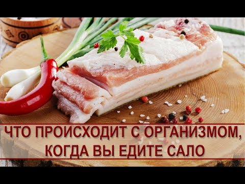 Польза сала: что происходит с организмом, когда вы едите сало