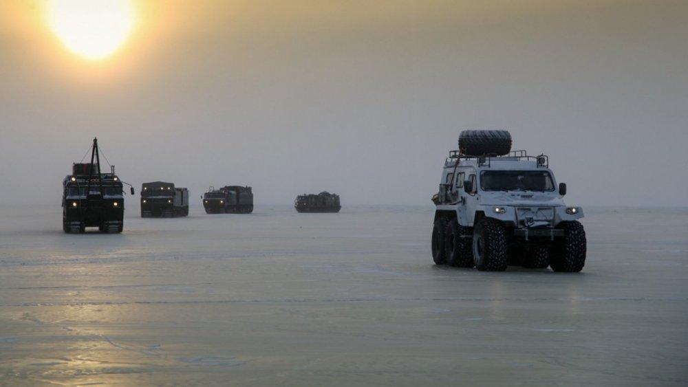 Зубная боль для США: стало известно об ответе Шойгу Западу в Арктике