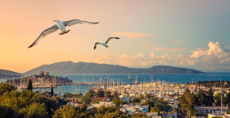 Курортный город в Турции сполз к морю после землетрясения