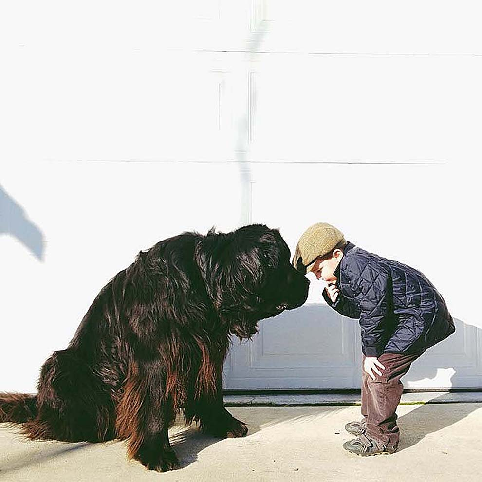 kidsanimals04 10 самых трогательных историй общения детей и животных