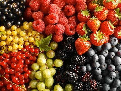 Топ 12 лучших продуктов, которые помогут всем женщинам легко сбросить вес