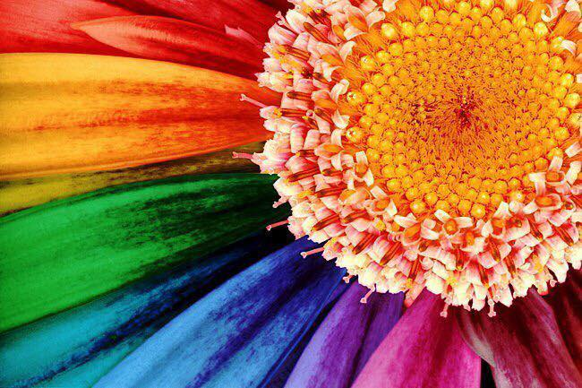 Применение цветовой гаммы в Биоэнергетике и Цветотерапии