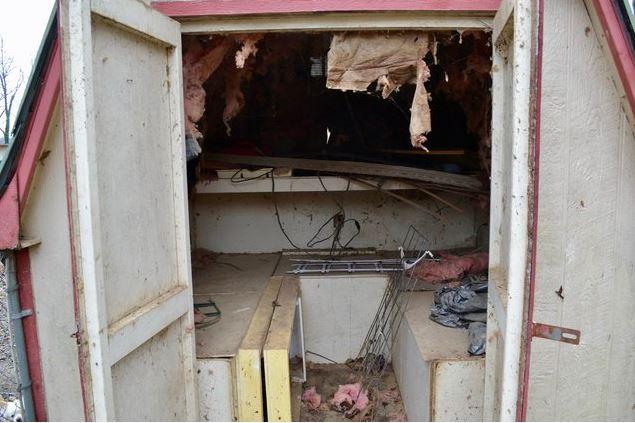 Что за дверью? 40 лет мужчина разводил животных, а теперь решил публично показать свою собачью ферму