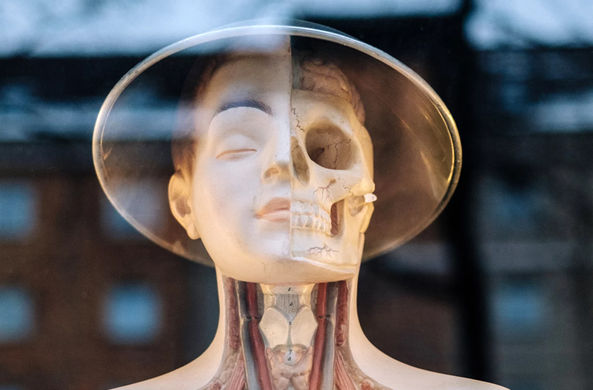 В США впервые отредактировали геном в организме человека