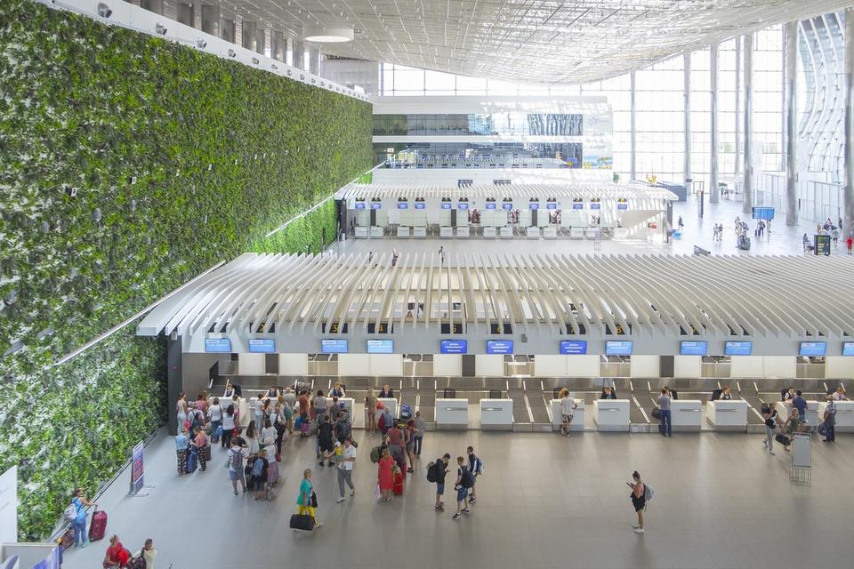 Посетителей аэропортов науча…