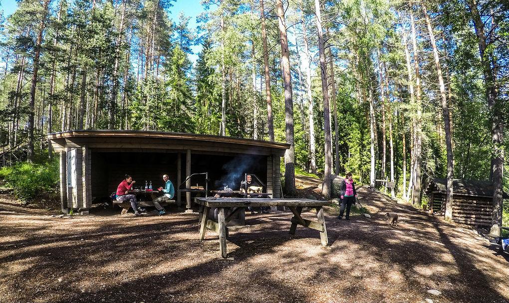 Опыт соседей: как в Финляндии избавились от мусора в лесах и от лесных пожаров