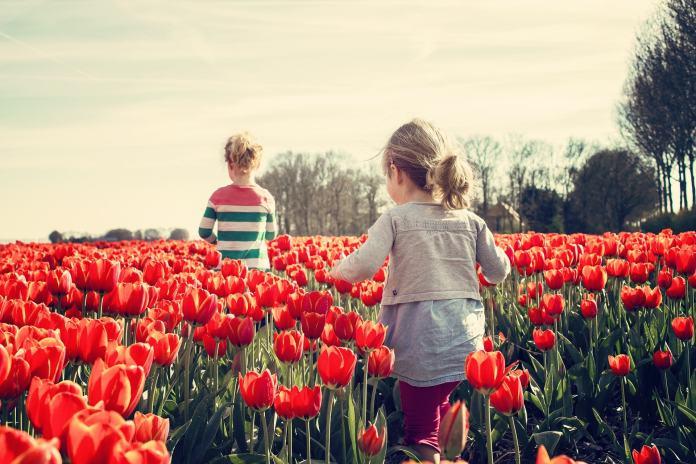 От каких 12 ненужных вещей нужно освободить ребенка, чтобы он вырос счастливым?