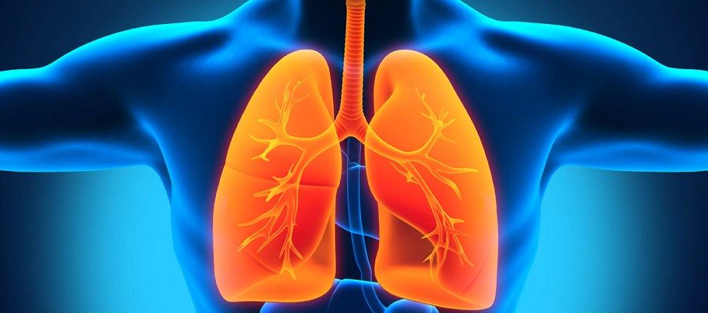 Симптомы болезней легких у взрослых