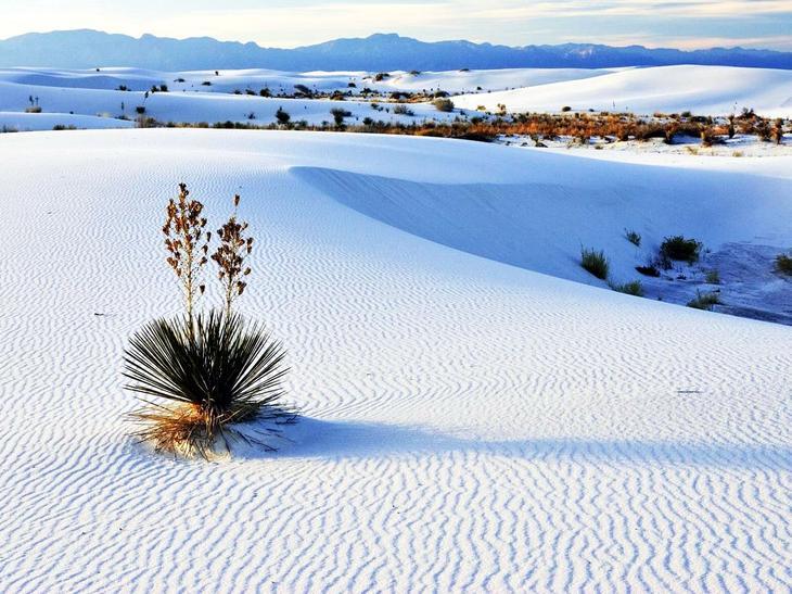 Белые пески США. Жажда цветов и красок. 11 самых необычных и загадочных пустынь нашей планеты. Фото с сайта NewPix.ru