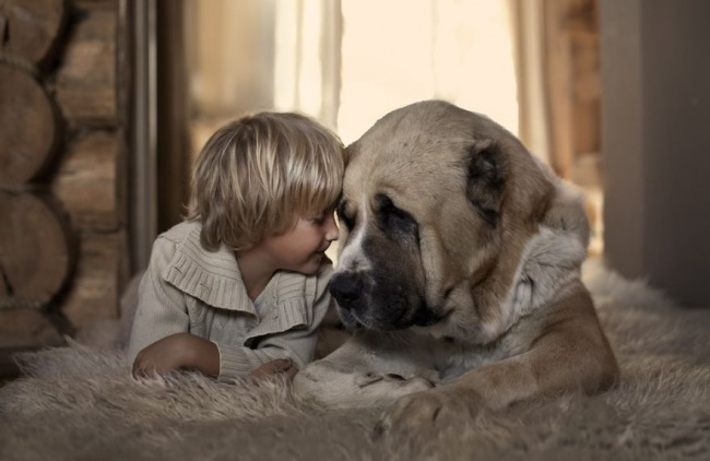 Маленькие хозяева  больших собак