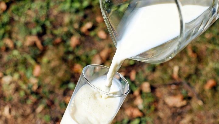 В России разработан препарат, повышающий качество молока