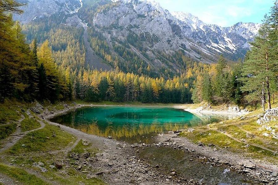 3149186 Призрачный парк Зеленого озера