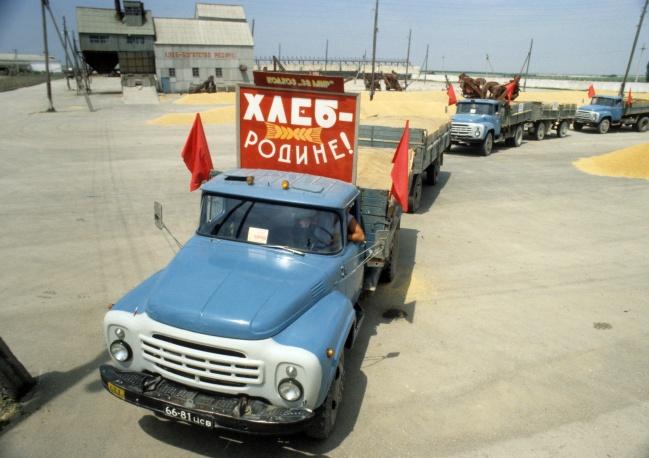 """Транспортировка урожая с полей крымского совхоза """"За мир"""", 1981 год"""