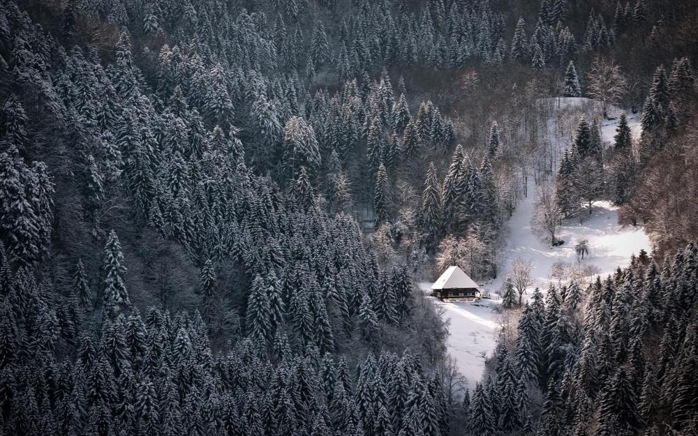 15 уютных домов, в которые так и хочется сбежать после тяжелой рабочей недели