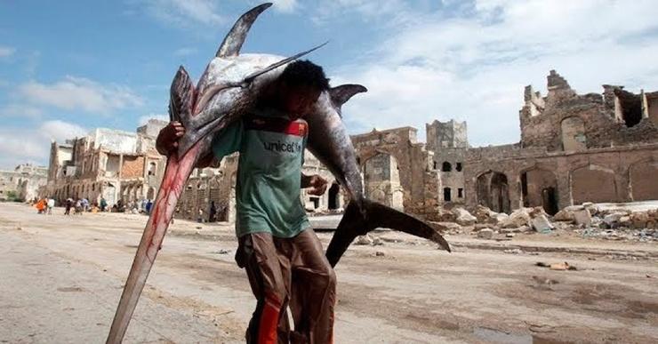 Здоровенные морские монстры на рынке в столице Сомали