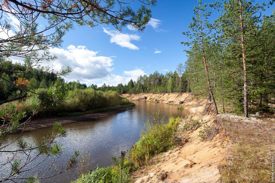 16. Вот такой лес на юге Коми. Река Лэпью впадает в Сысолу. Та, в свою очередь, впадает в Вычегду, а та — в Северную Двину.