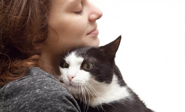 Коляска помогла — как девочка и кот-подобрашка нашли общий язык