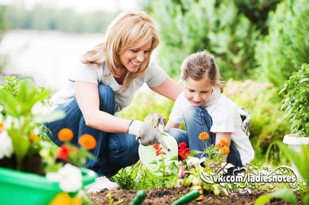 Маленькие секреты садовода