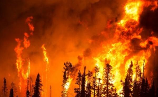 Кадры страшного пожара в Кры…