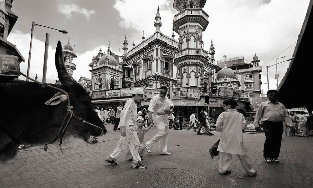 Изумляющая Индия в объективе легендарного Рагху Рая 20