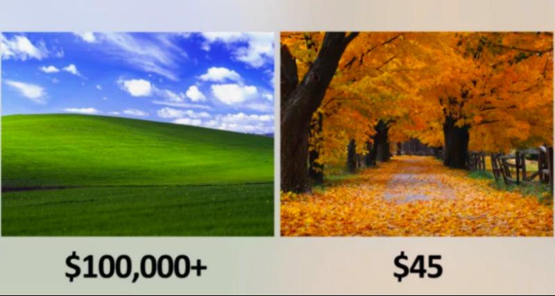 Такие разные обои: Microsoft заплатила 100 тысяч за «Безмятежность» и 45 долларов за «Осень»