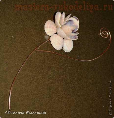 Мастер-класс по декорированию: Цветы из ракушек