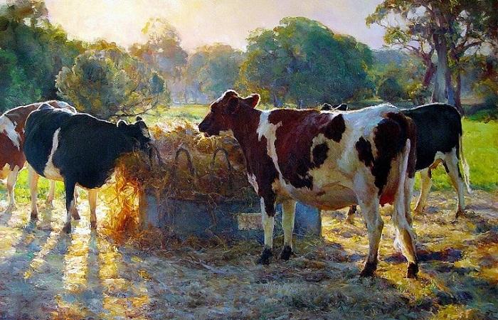 Солнечная живопись Джона Маккартина - художника который соединил пространство, воздух и свет в единое целое